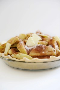 Best Dutch Apple Pie Recipe