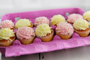 Cupcakes in egg carton header