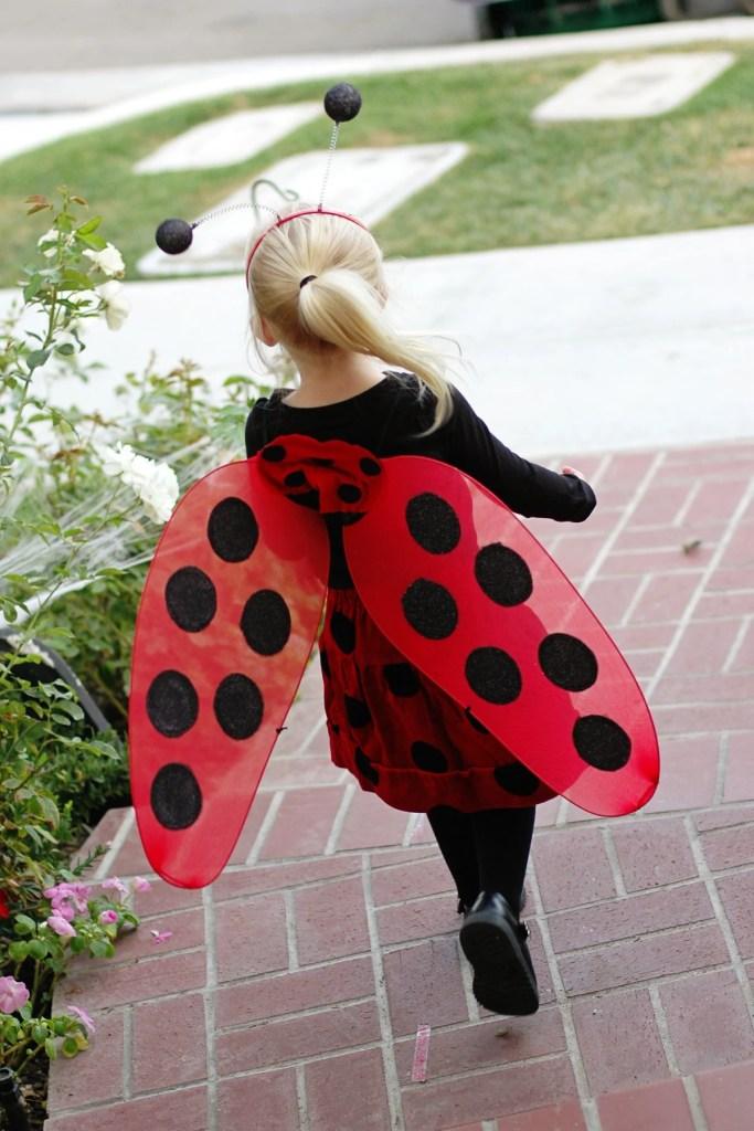 ladybug best halloween costumes