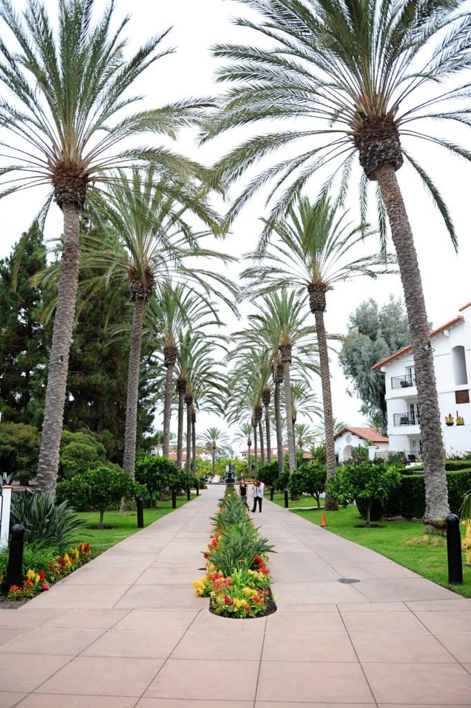 omni la costa resort and spa