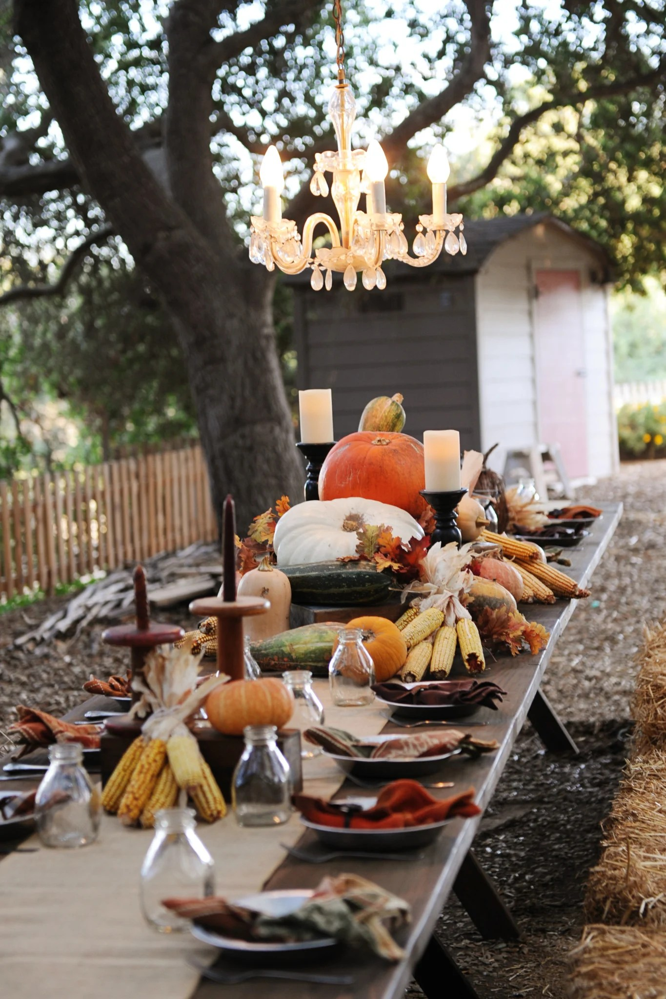Fall Dinner Party Under the Stars