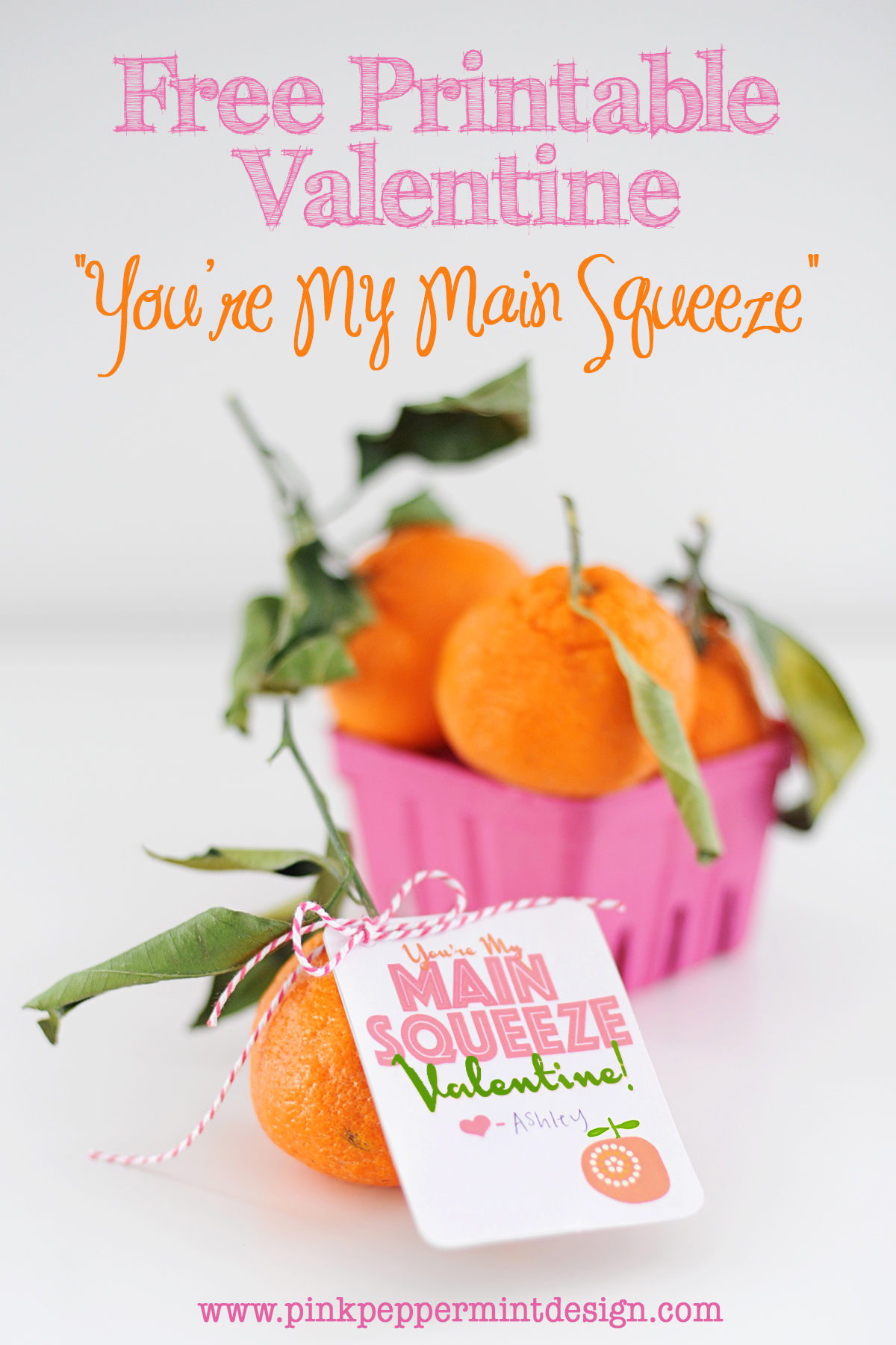 """You're My Main Squeeze"" DIY Handmade Free Printable Valentine by Tammy Mitchell"