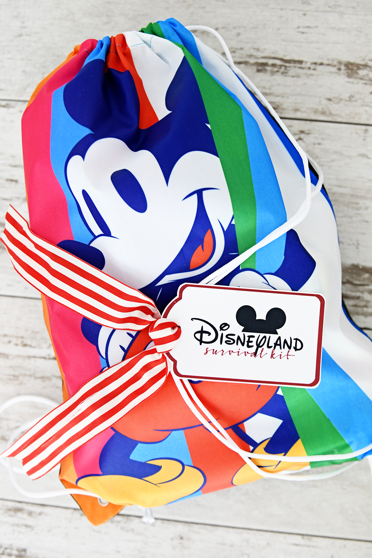 Disney Gifts for Mom