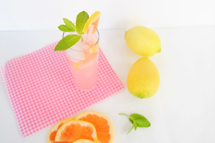 Grapefruit soda 2 header 1024x682 1