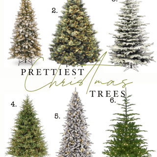 prettiest Christmas trees