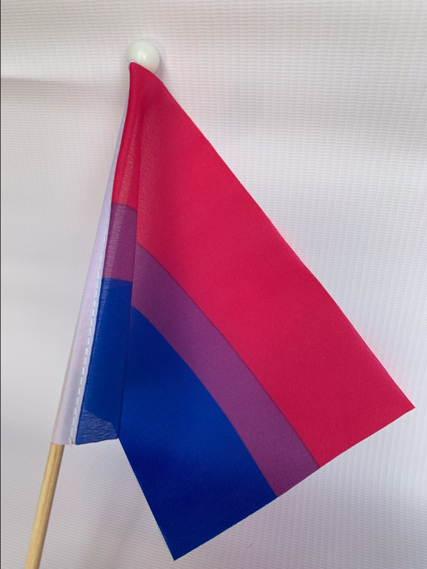 Bisexual Stick Flag