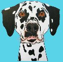 Pop-Art Dog Prints