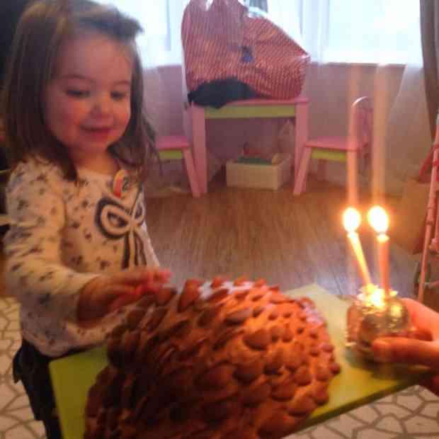 Thea and her chocolate hedgehog cake