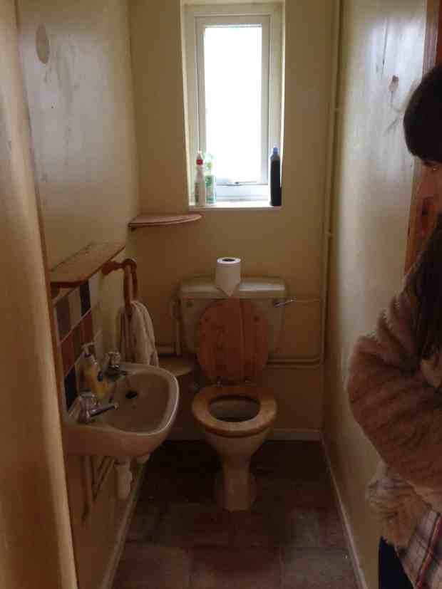 Toilet before makeover