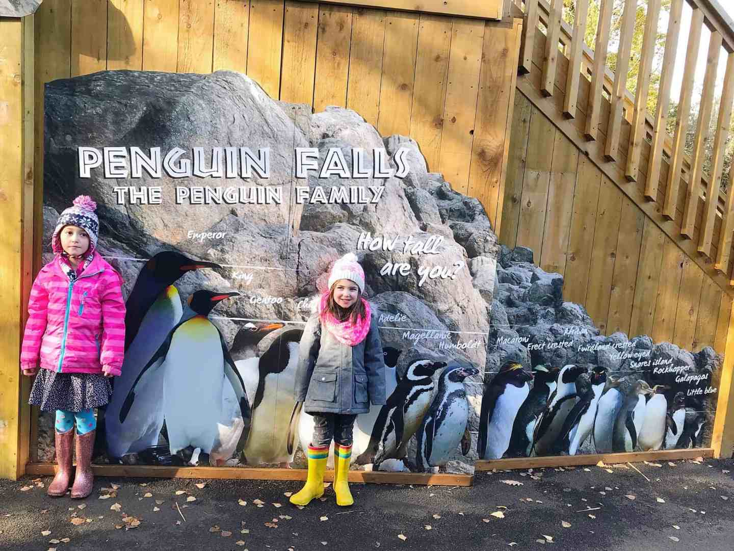 A Day of Fun at Paradise Wildlife Park in Hertfordshire
