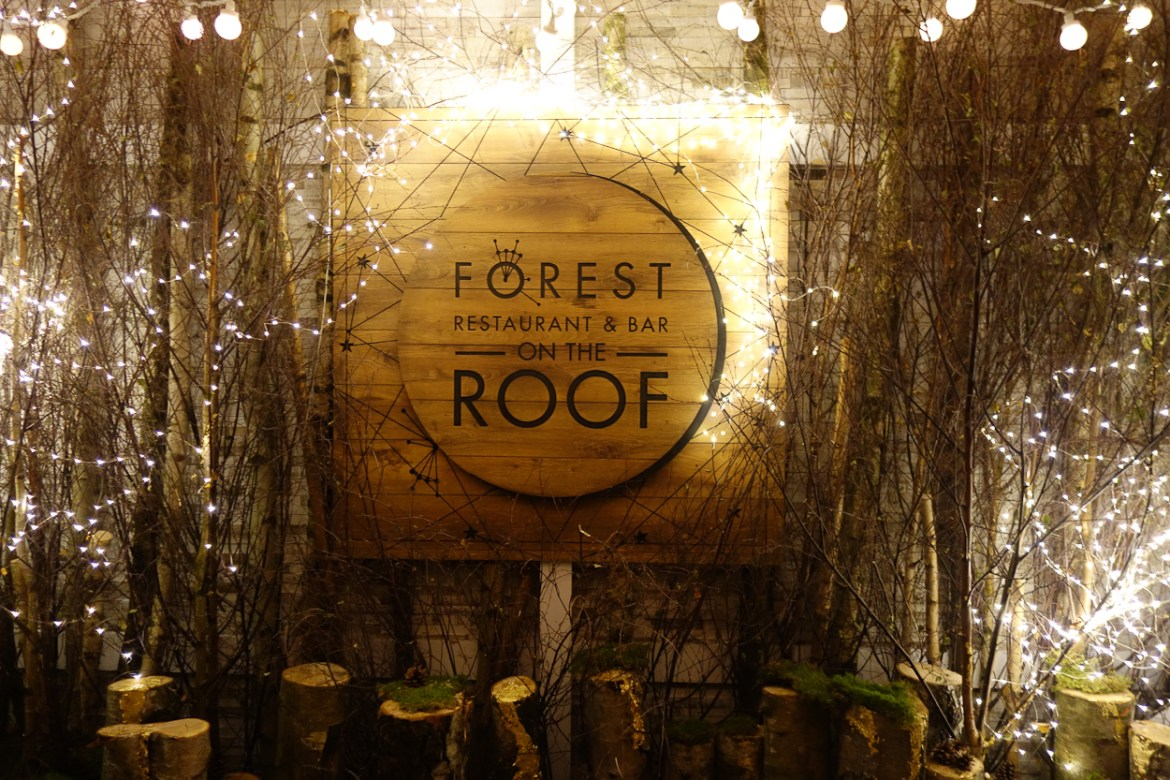 Forest-Selfridges-2015-00868
