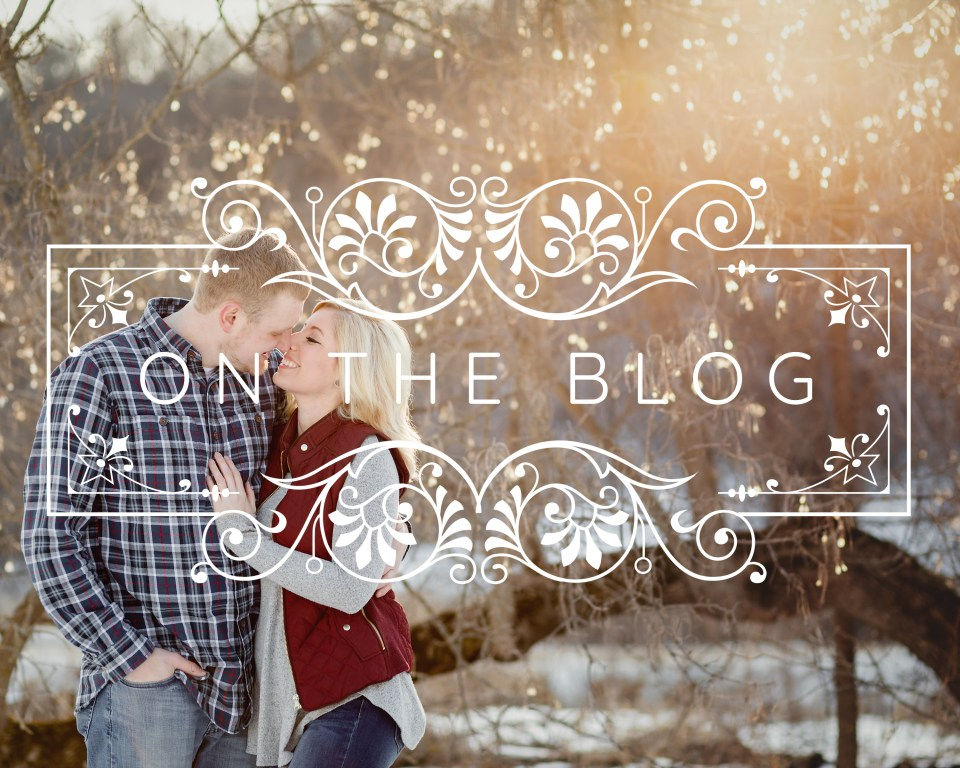 ENGAGEMENT SESSION AT CASSELL HOLLOW FARM · KATIE + TRENT