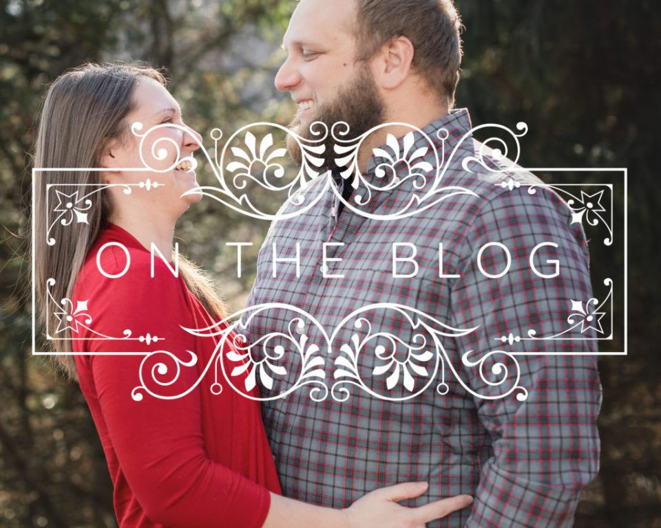 Engagement and Family Session at Cassell Hollow Farm · Stacy + Derek