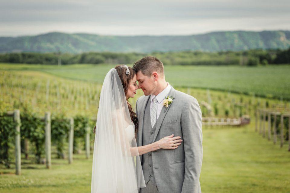 Elmaro Vineyard Wedding, Wisconsin