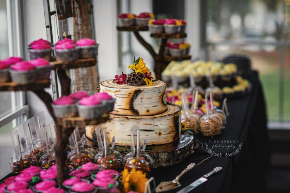 Rustic Birch Tree Wedding Cake · Celebrations on the River Wedding in La Crosse, WI