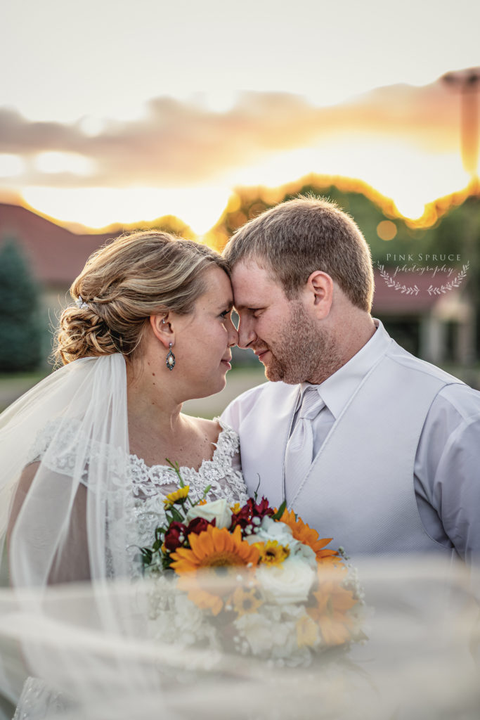 Sunset Wedding Photo · Celebrations on the River Wedding in La Crosse, WI