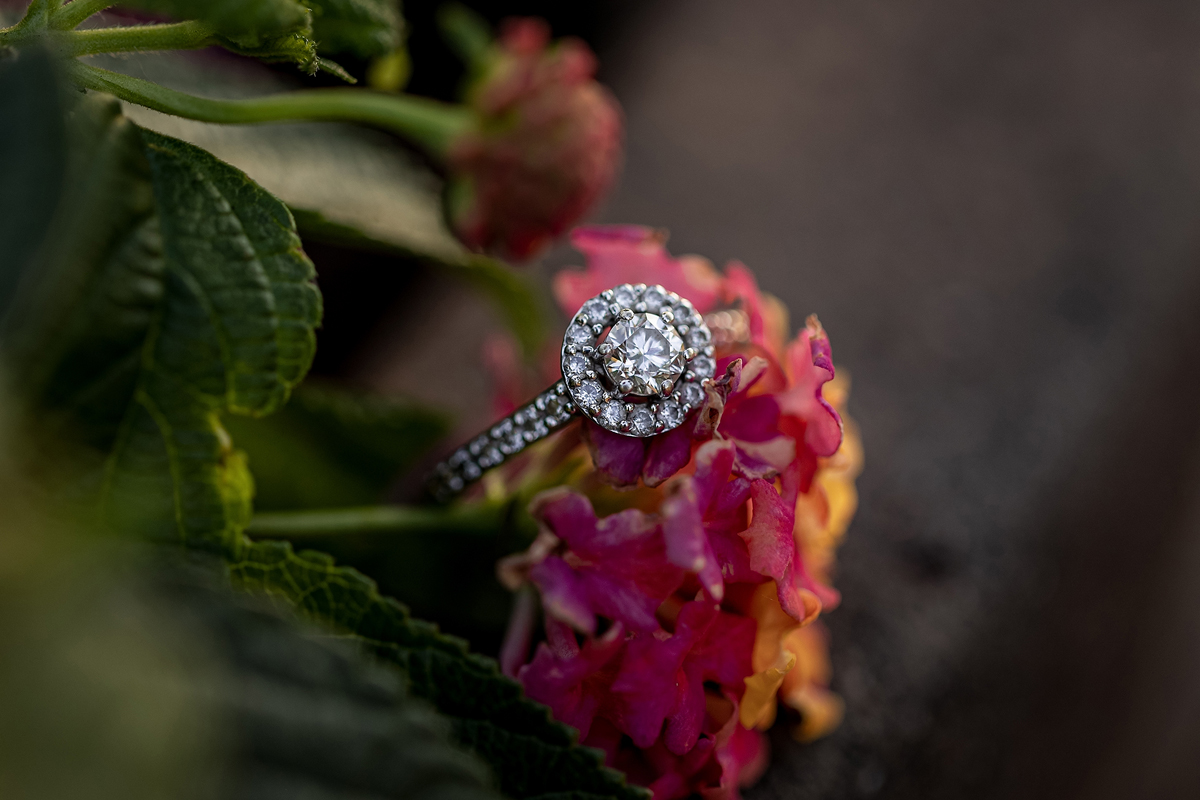 Summer Engagement Session at Riverside Park   Pink Spruce Photography – Wisconsin Wedding Photographer