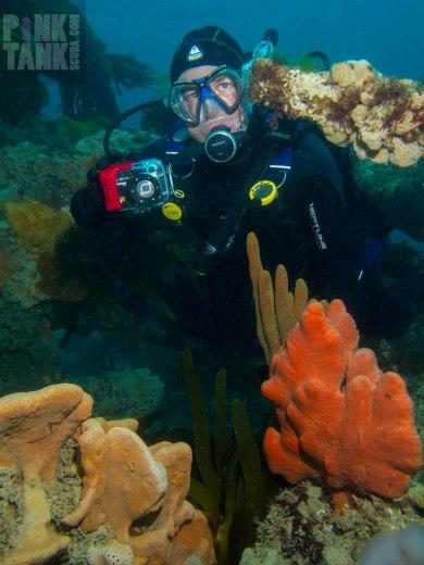 LOGO David with sponges on Eliza Ramsden
