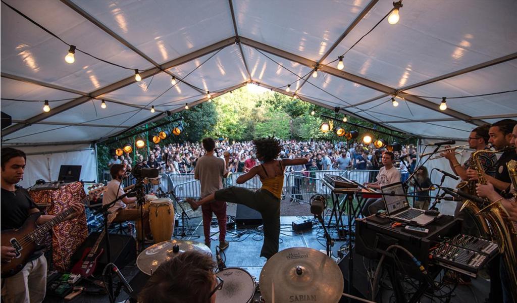 sheffield music festivals