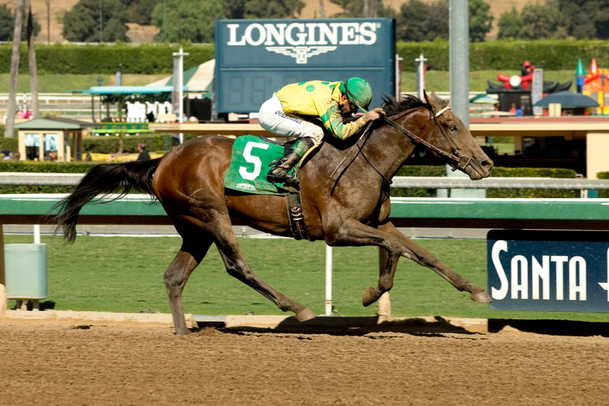 2YO MIDNIGHT RUN Rallies for Santa Anita Maiden Tally