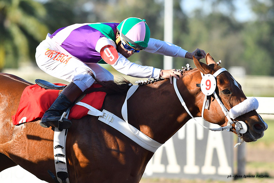 EMERGING TALENT Captures First Graded Stakes in G1 Event