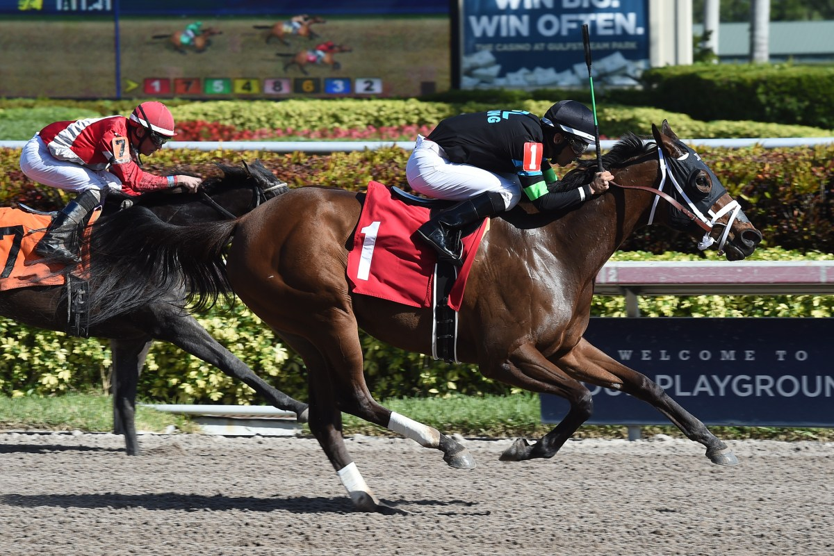 ALTER MOON Dominates Field by Nearly 15 Lengths at Gulfstream