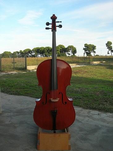 Violoncello2015_01