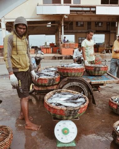 Lampulo Fish Auction