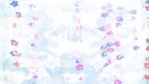 cinderella_bg_rect4web