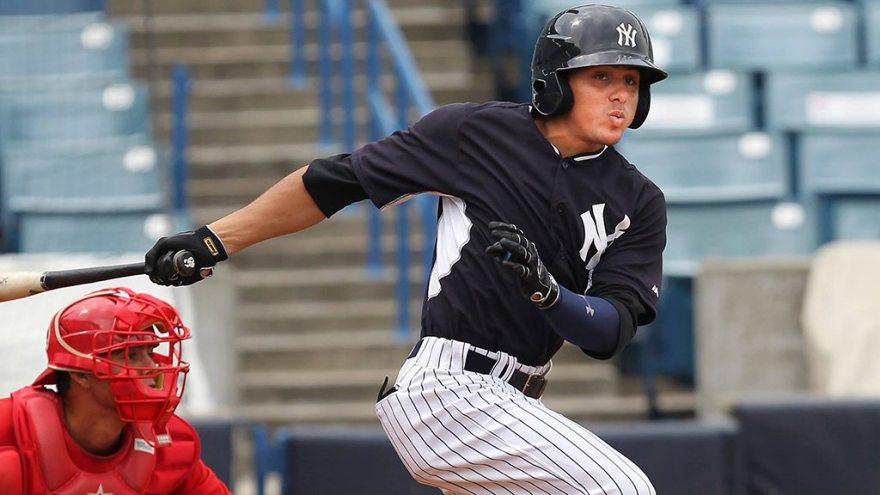 Carlos Vidal was the top hitter for the Pulaski Yankees (© Mark LoMoglio/Yankees)
