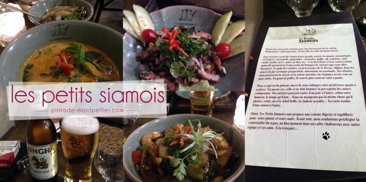 petits-siamois-restaurant2