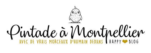 Une Pintade à Montpellier