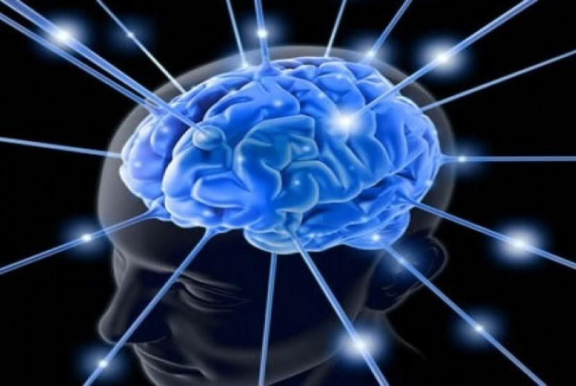 3 Kebiasaan Sebagai Cara Meningkatkan Kinerja Otak