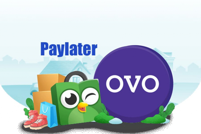 Cara Menggunakan OVO Paylater Paling Mudah