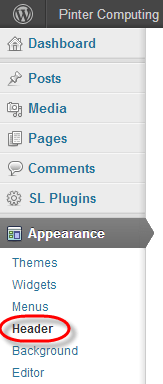 WordPress Theme Header Change Select