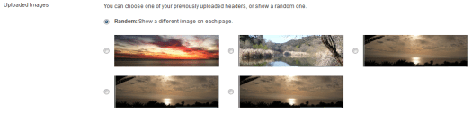 WordPress Theme Header Wrong Images