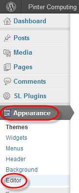 wordpress appearance editor select