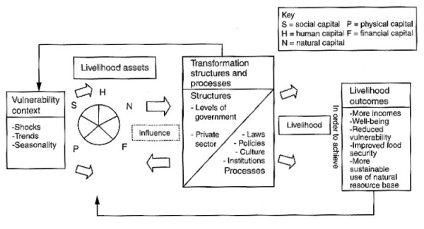 The Sustainable Livelihoods Approach (DFID, 1999, in Wang & Cater, 2015)