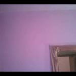 Plastico Morado y rosa 2