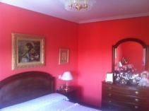 Plastico Color Rosa Asalmanado (3)
