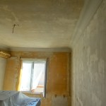 Aceite de linaza en techos y paredes (20)