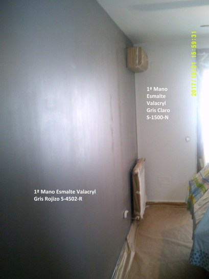 Esmalte Valacryl Gris Claro y Gris Oscuro Rojizo 16