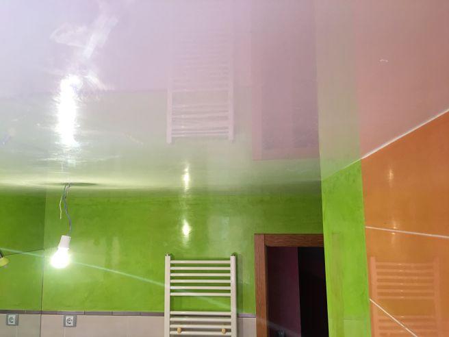 Estuco Mineral Blanco y Estuco Veneciano Verde en Wc (2)