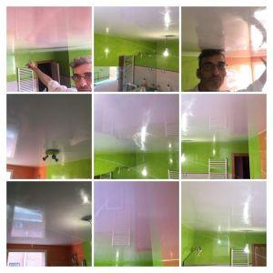 Estuco Mineral Blanco y Estuco Veneciano Verde en Wc (2) - COLLAGE