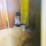Muestras de Estuco Negro - Amarillo Flash (6)
