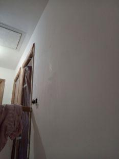 2 mano de aguaplas rellenos en paredes (18)