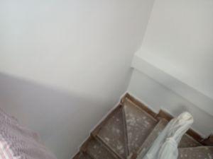 2 mano de plastico sideral s-500 gris en paredes (16)