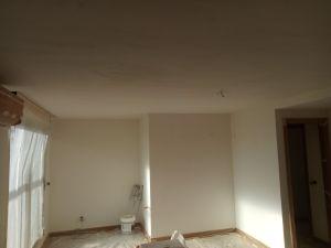 Aplicado 2ª Mano de Aguaplast Macyplast en techos y paredes (6)