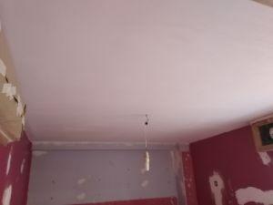 Aplicado 1 mano de aguaplast macyplast en techos (5)