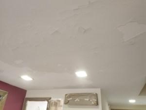 Estado techos Salon y entrada (13)